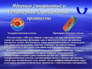 Ядерные (эукариоты) и безъядерные (прокариоты) организмы Клетки ведут себя ка