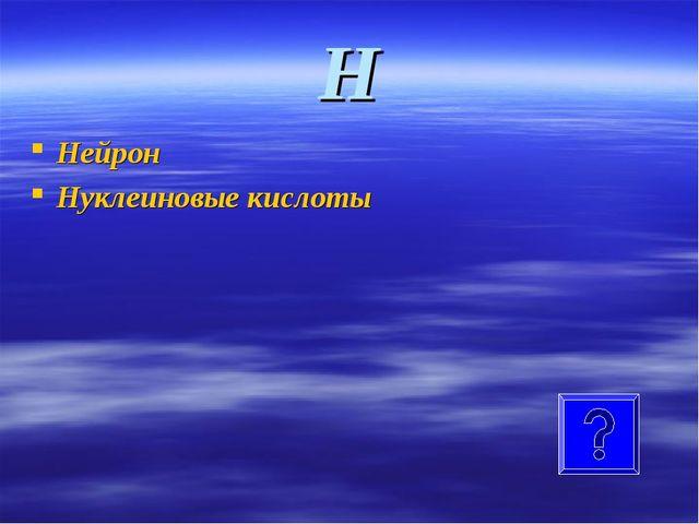 Н Нейрон Нуклеиновые кислоты
