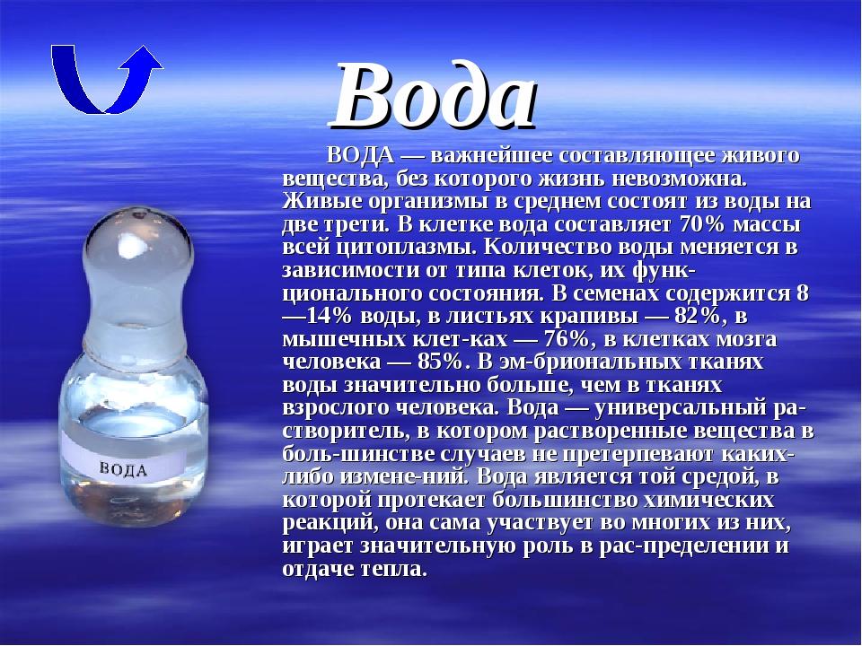 Вода ВОДА — важнейшее составляющее живого вещества, без которого жизнь невозм...