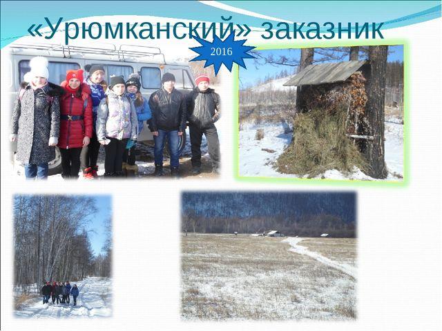«Урюмканский» заказник 2016