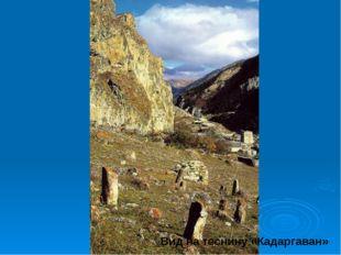 Вид на теснину «Кадаргаван»
