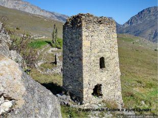 Фамильные башни в ауле Цымит