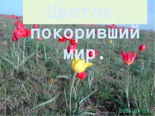 Цветок, покоривший мир.