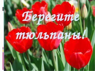 Берегите тюльпаны!
