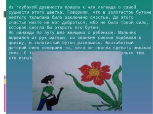 Из глубокой древности пришла к нам легенда о самой сущности этого цветка. Гов