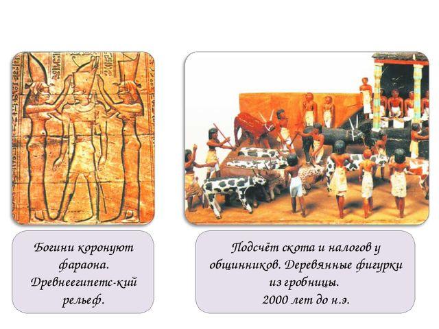 Богини коронуют фараона. Древнеегипетс-кий рельеф. Подсчёт скота и налогов у...