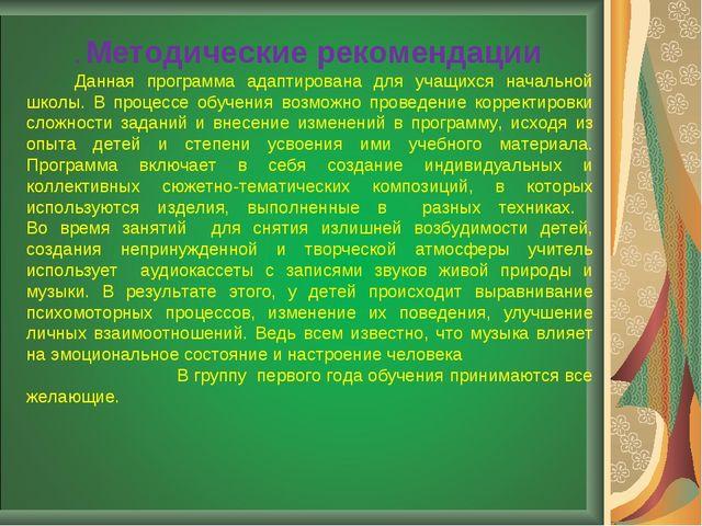 . Методические рекомендации Данная программа адаптирована для учащихся началь...