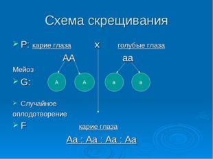 Схема скрещивания P: карие глаза x голубые глаза АА аа Мейоз G: Случайное опл