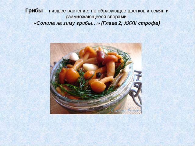 Грибы – низшее растение, не образующее цветков и семян и размножающееся спора...
