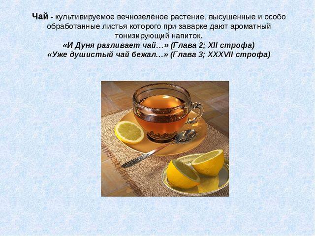 Чай - культивируемое вечнозелёное растение, высушенные и особо обработанные л...