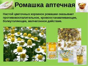Ромашка аптечная Настой цветочных корзинок ромашки оказывает противовоспалите