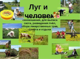 Луг и человек Луга используют для сенокошения, для выпаса скота, разведения п