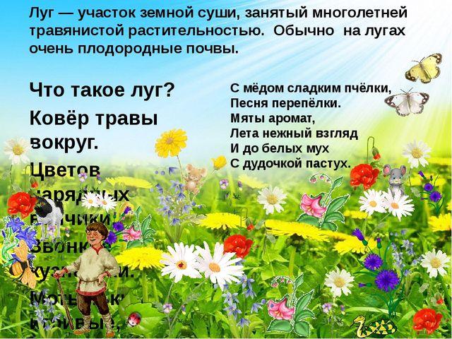 Что такое луг? Ковёр травы вокруг. Цветов нарядных венчики, Звонкие кузнечики...