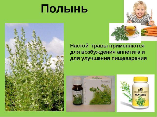 Полынь Настой травы применяются для возбуждения аппетита и для улучшения пище...