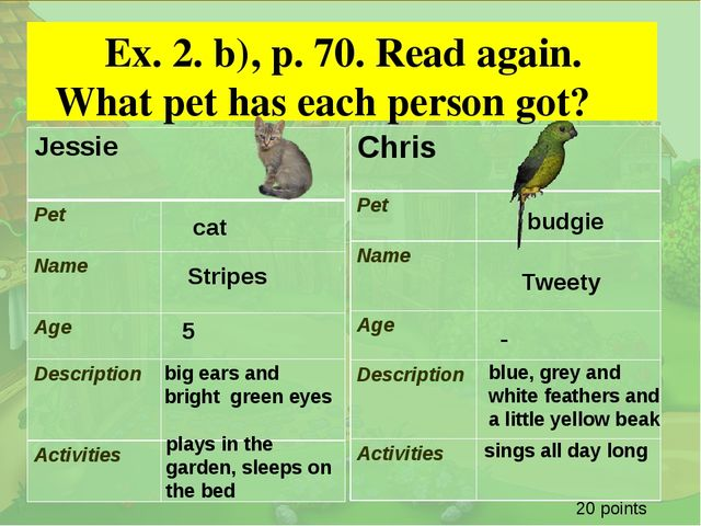 . Ex. 2. b), p. 70. Read again. What pet has each person got? cat Stripes bi...