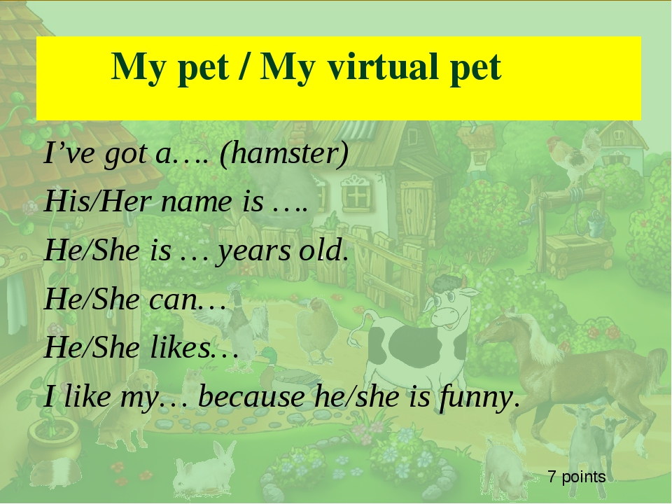 . My pet / My virtual pet I've got a…. (hamster) His/Her name is …. He/She i...
