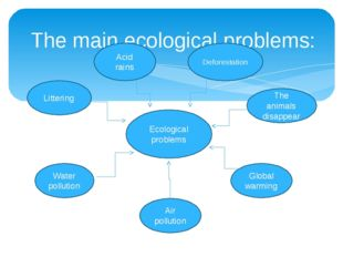 The main ecological problems: Ecological problems Water pollution Littering A