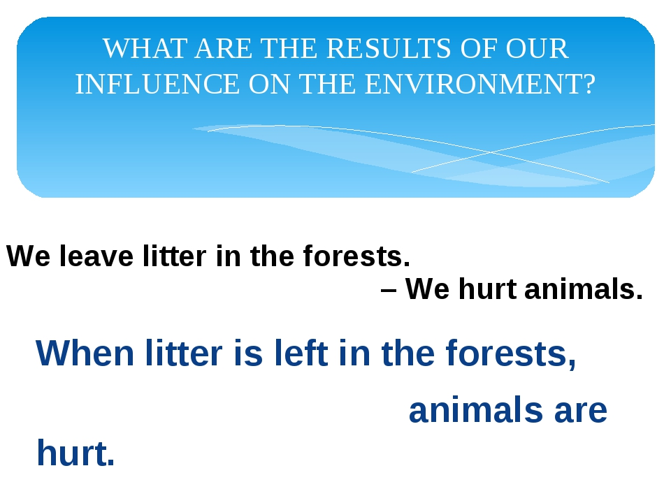 WHAT ARE THE RESULTS OF OUR INFLUENCE ON THE ENVIRONMENT? When litter is left...