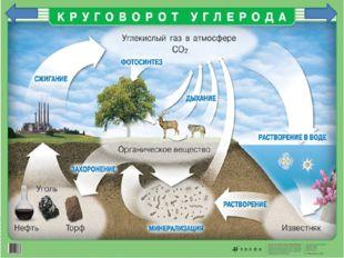 Огромное геохимическое значение имеет круговорот углерода.