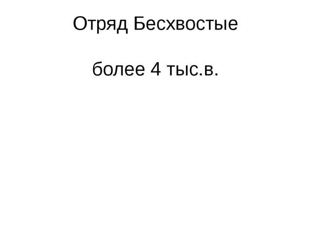 Отряд Бесхвостые более 4 тыс.в.