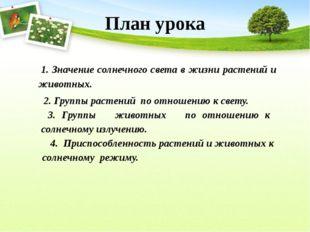 1. Значение солнечного света в жизни растений и животных. 2. Группы растений