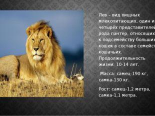 Лев – вид хищных млекопитающих, один из четырёх представителей рода пантер,