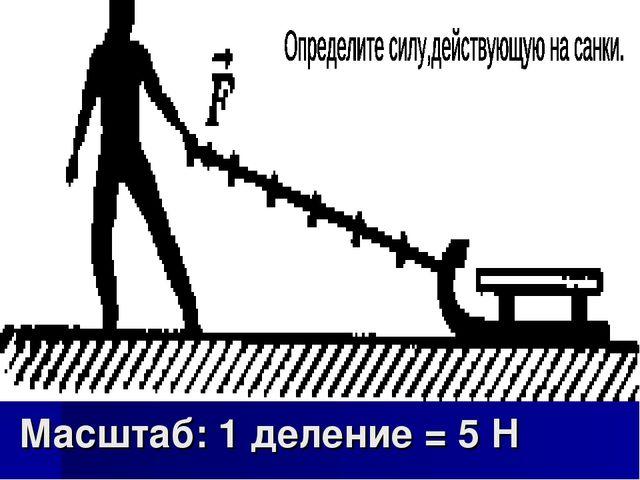 Масштаб: 1 деление = 5 Н
