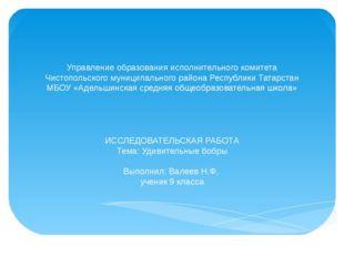 Управление образования исполнительного комитета Чистопольского муниципального