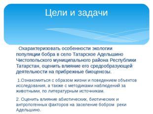 Охарактеризовать особенности экологии популяции бобра в село Татарское Адель