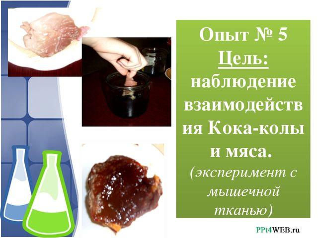 Опыт № 5 Цель: наблюдение взаимодействия Кока-колы и мяса. (эксперимент с мыш...