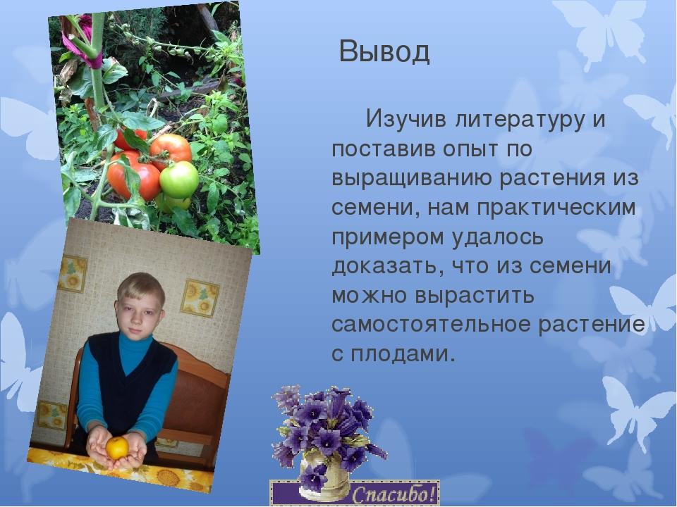 Вывод Изучив литературу и поставив опыт по выращиванию растения из семени, н...