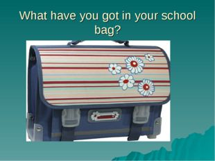 What have you got in your school bag?