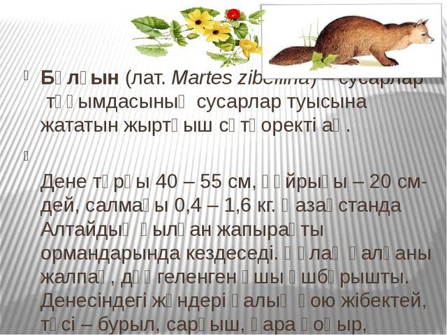 Бұлғын(лат.Martes zibellina) –сусарлартұқымдасыныңсусарлартуысына жатат...