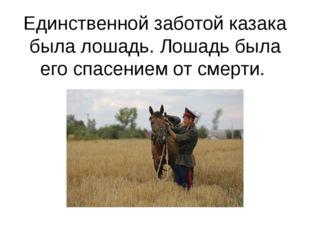 Единственной заботой казака была лошадь. Лошадь была его спасением от смерти.