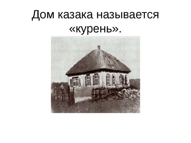 Дом казака называется «курень».