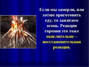Если мы замерли, или хотим приготовить еду, то зажигаем огонь. Реакция горени