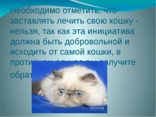 Необходимо отметить, что заставлять лечить свою кошку - нельзя, так как эта и