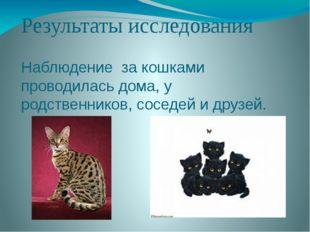 Результаты исследования Наблюдение за кошками проводилась дома, у родственник