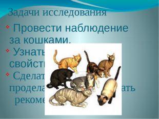 Задачи исследования Провести наблюдение за кошками. Узнать их полезные свойст