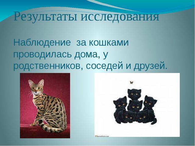 Результаты исследования Наблюдение за кошками проводилась дома, у родственник...