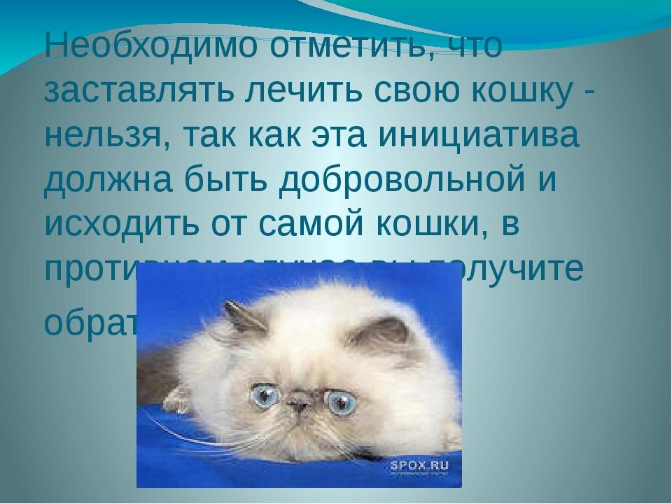 Необходимо отметить, что заставлять лечить свою кошку - нельзя, так как эта и...