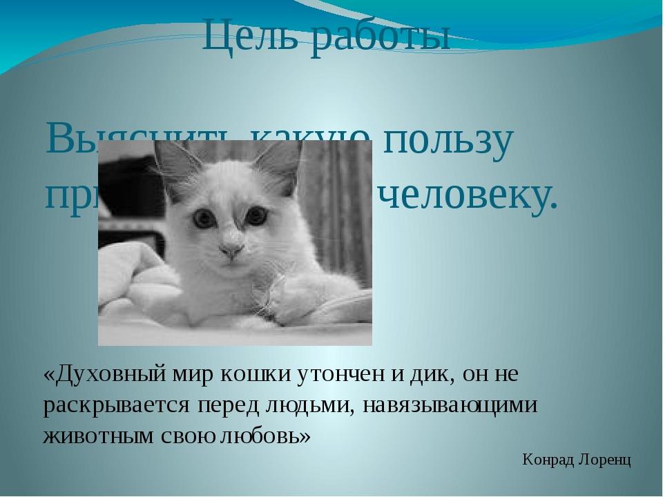Цель работы Выяснить какую пользу приносят кошки человеку. «Духовный мир кошк...