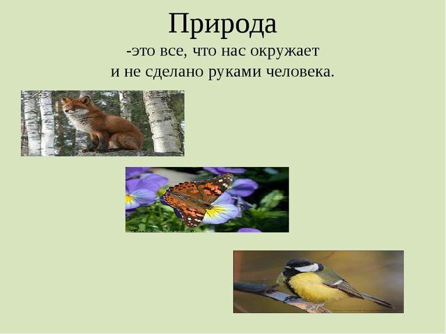 Природа -это все, что нас окружает и не сделано руками человека.