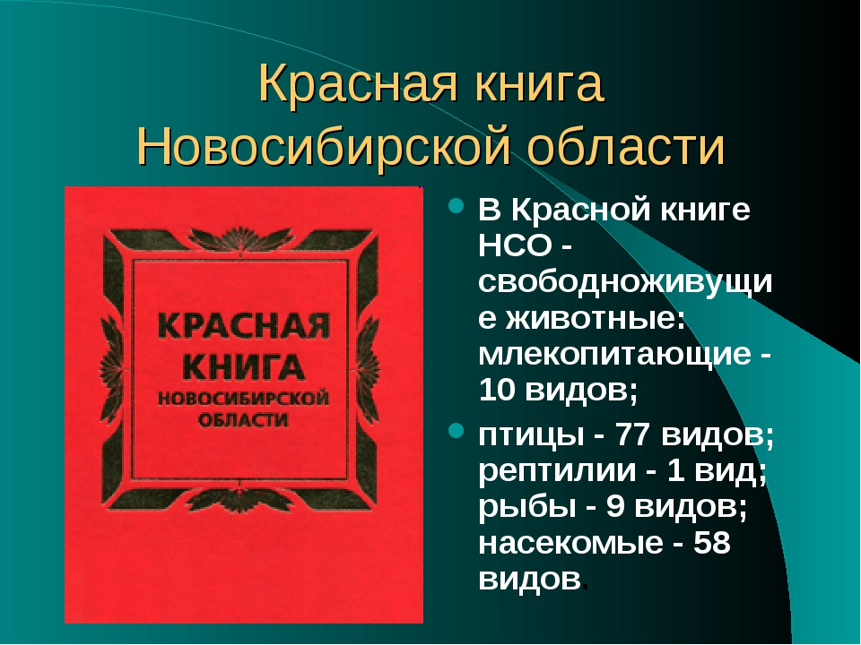 Красная книга Новосибирской области В Красной книге НСО - свободноживущие жив...
