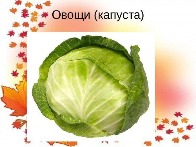 Овощи (капуста)