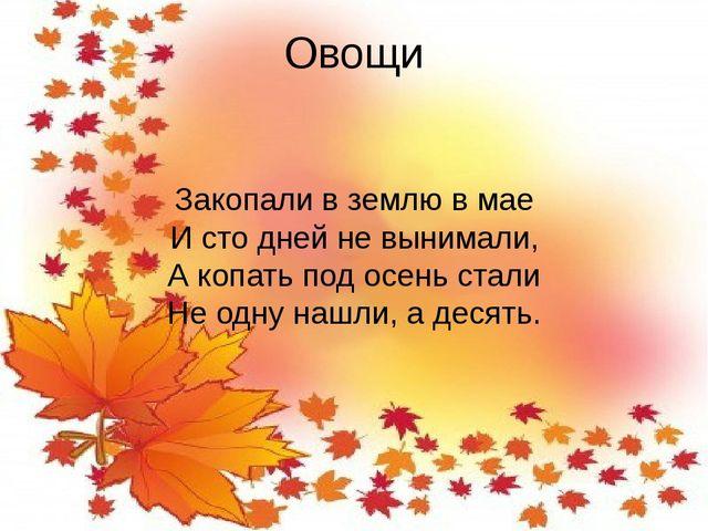 Овощи Закопали в землю в мае И сто дней не вынимали, А копать под осень стали...