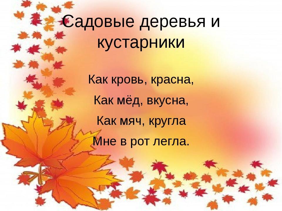 Садовые деревья и кустарники Как кровь, красна, Как мёд, вкусна, Как мяч, кру...