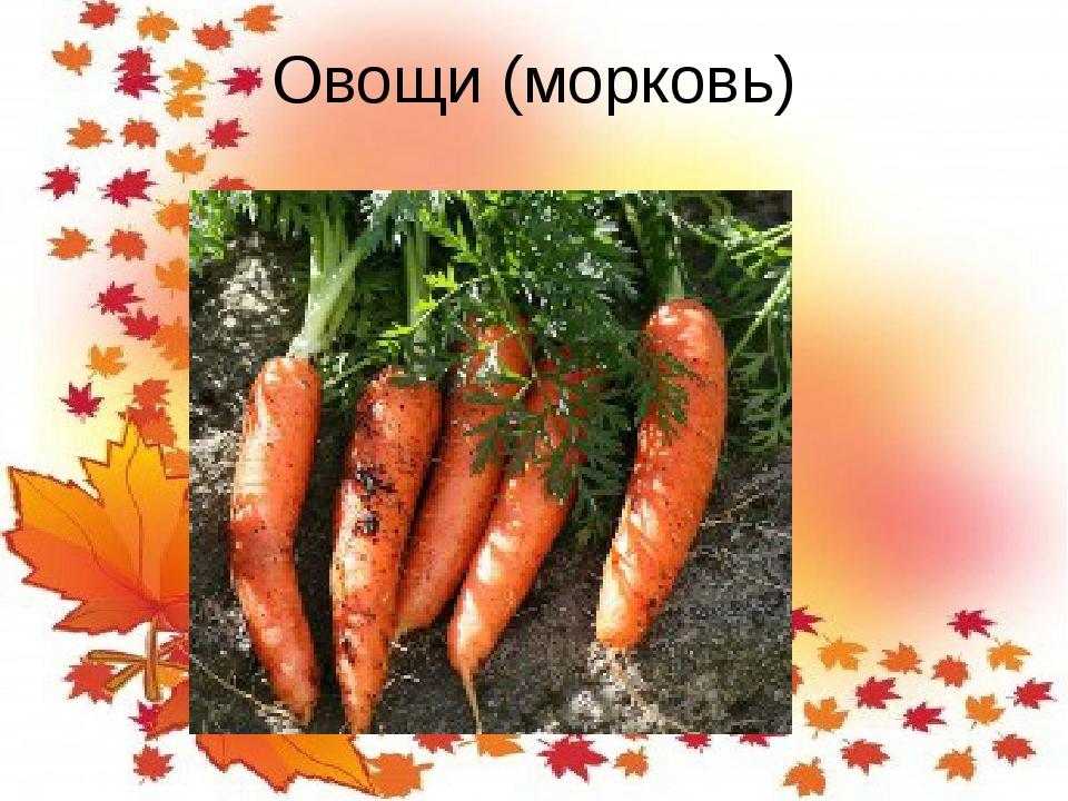 Овощи (морковь)