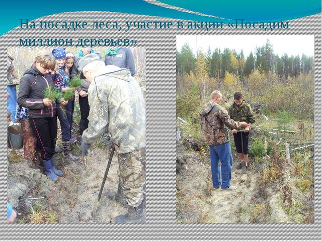 На посадке леса, участие в акции «Посадим миллион деревьев»