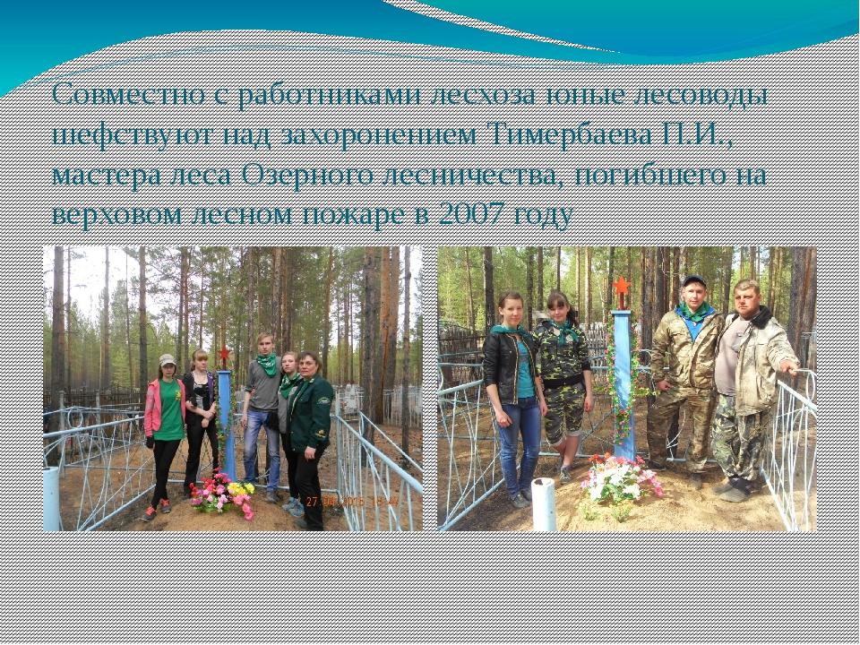 Совместно с работниками лесхоза юные лесоводы шефствуют над захоронением Тиме...